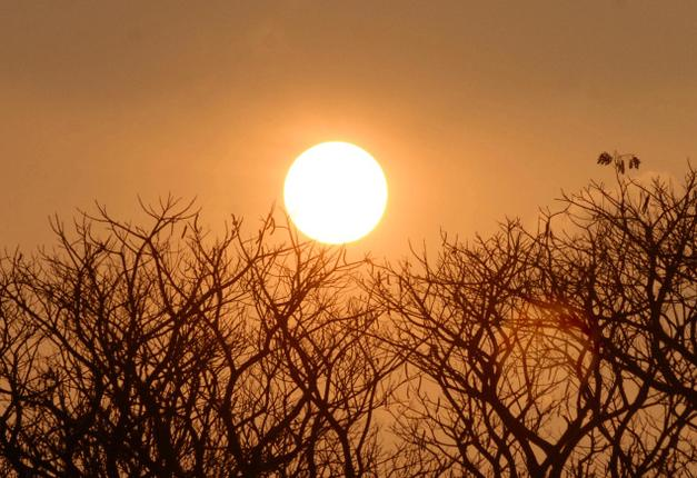 Heat wave: Hottest March day in Delhi since 2011 as Vidarbha sizzles
