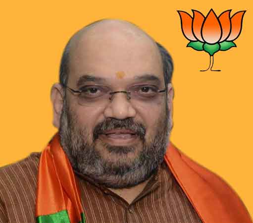 PM Modi fulfilled Sardar Patel's dream of Akhand Bharat, says Amit Shah