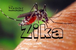10 new Zika diagnosis centre across India soon
