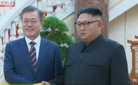 leaders of the 2 Koreas