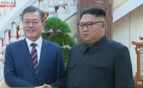 leaders of the 2 Koreas