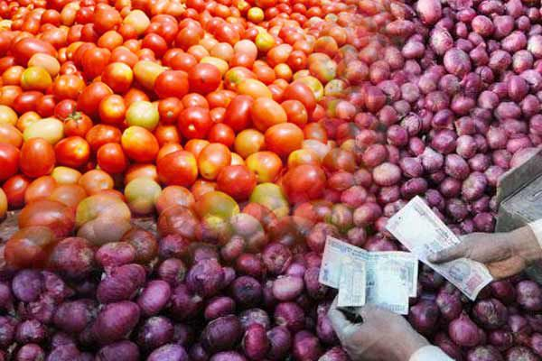 onion-and-tomato